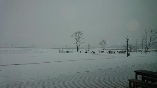 「地球温暖化」に強い! 益子町。_d0101562_09382671.jpg