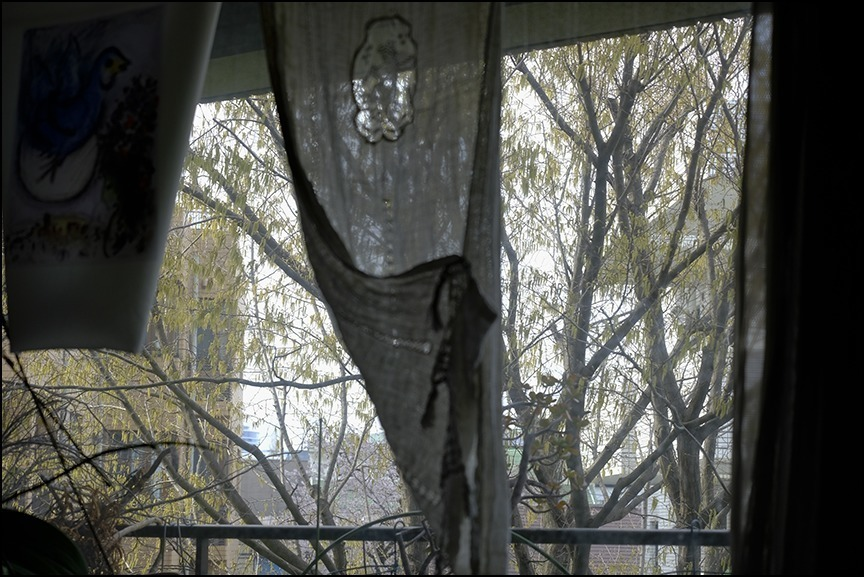 遠くの桜は今日もまだ散り終わらずに残っているようです_a0031363_22542188.jpg