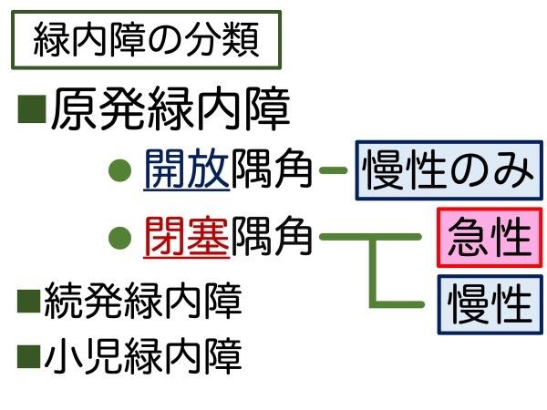 第7章 誤解の根源「急性緑内障発作」_a0257968_15313415.jpeg