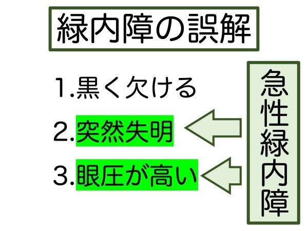 第7章 誤解の根源「急性緑内障発作」_a0257968_15313841.jpeg