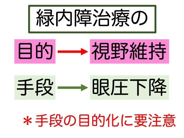 第5章 実践その2 緑内障の治療_a0257968_15500632.jpeg