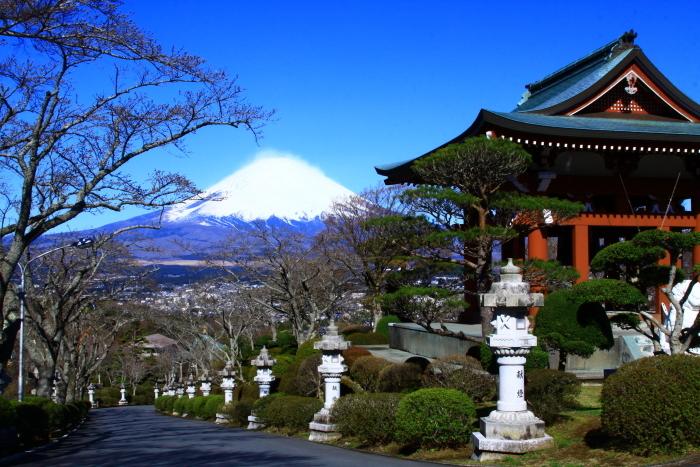 令和2年3月の富士 (23) 平和公園の富士_e0344396_22573746.jpg