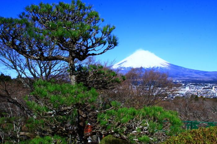 令和2年3月の富士 (23) 平和公園の富士_e0344396_22573756.jpg