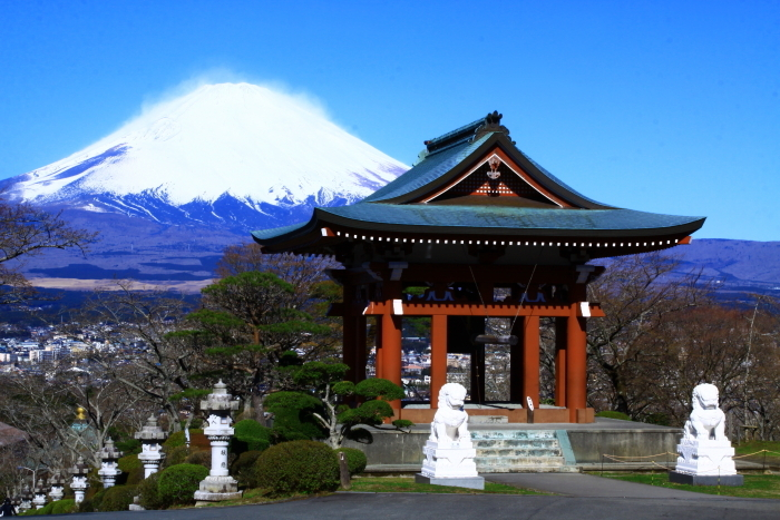 令和2年3月の富士 (23) 平和公園の富士_e0344396_22573778.jpg