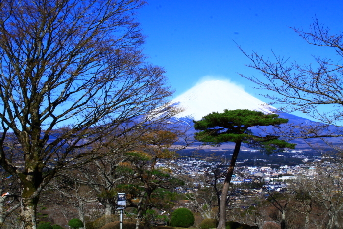 令和2年3月の富士 (23) 平和公園の富士_e0344396_22573861.jpg