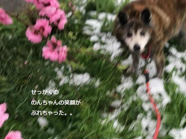 まるで真冬のような。。_f0242002_21231716.jpg