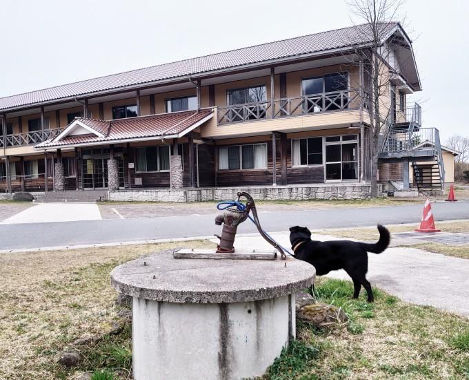 ワンちゃんと一緒に神河町を離れました…_d0265607_22201481.jpg