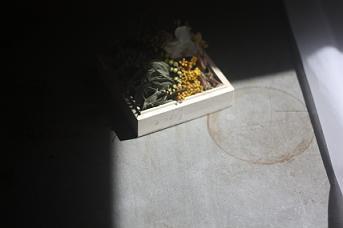 no.453 春の箱にこめられたおもい_a0139315_16562666.jpg