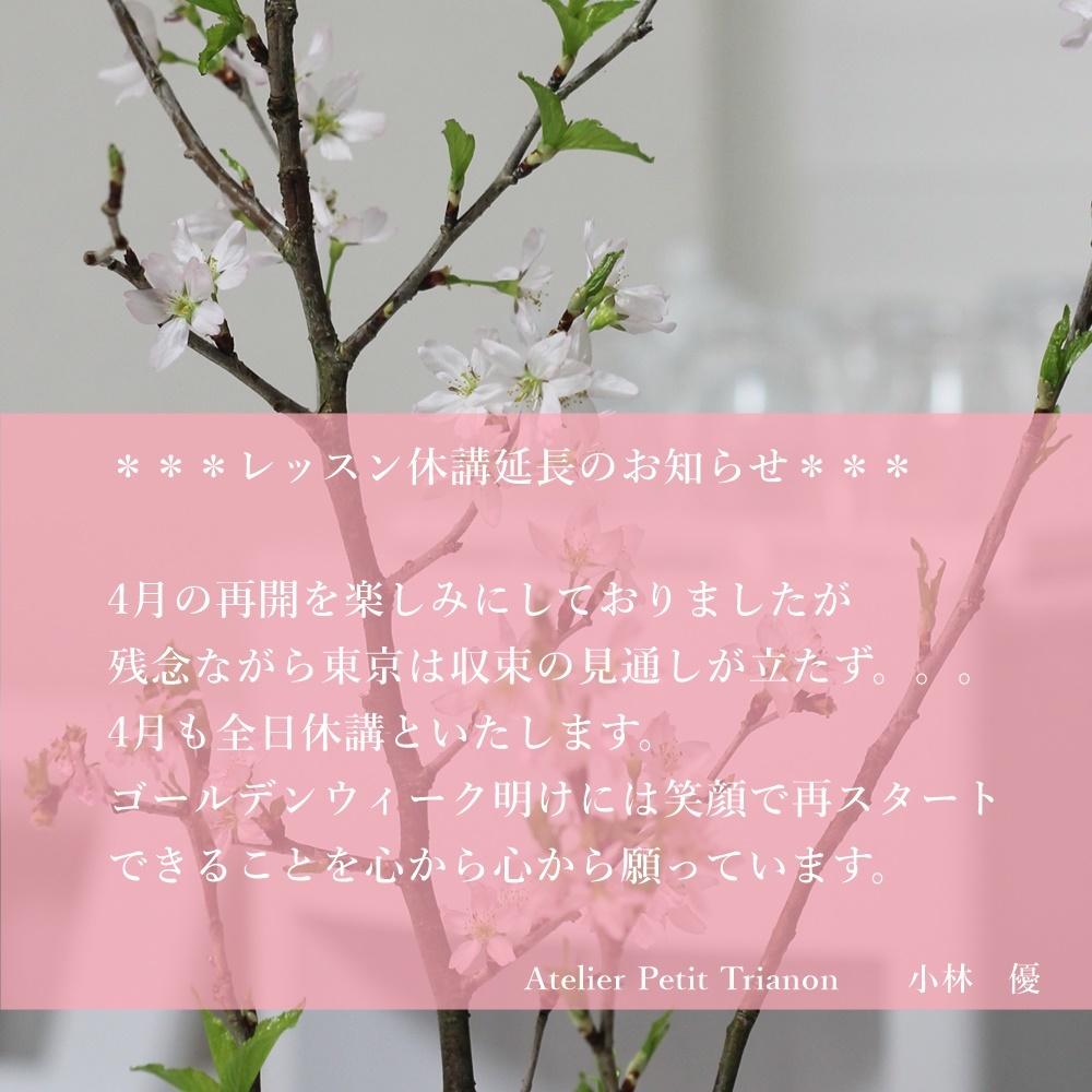 レッスン休講延長のお知らせ_c0162415_22141640.jpg