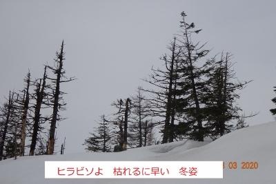 春の残雪蔵王_e0265627_14253725.jpg