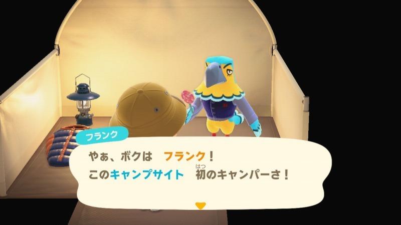 ゲーム「あつまれどうぶつの森 しずちゃん到来!!」_b0362459_20003786.jpg