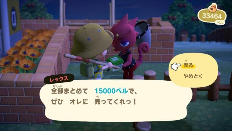 ゲーム「あつまれどうぶつの森 しずちゃん到来!!」_b0362459_20205267.jpg