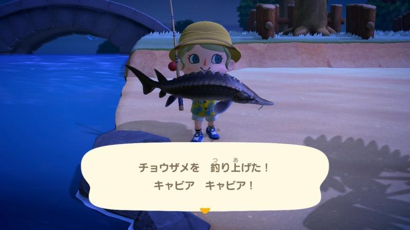 ゲーム「あつまれどうぶつの森 しずちゃん到来!!」_b0362459_20250066.jpg