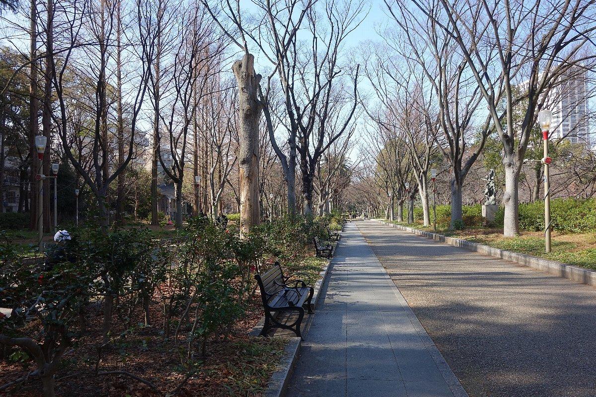 靭(うつぼ)公園 東園_c0112559_08121510.jpg