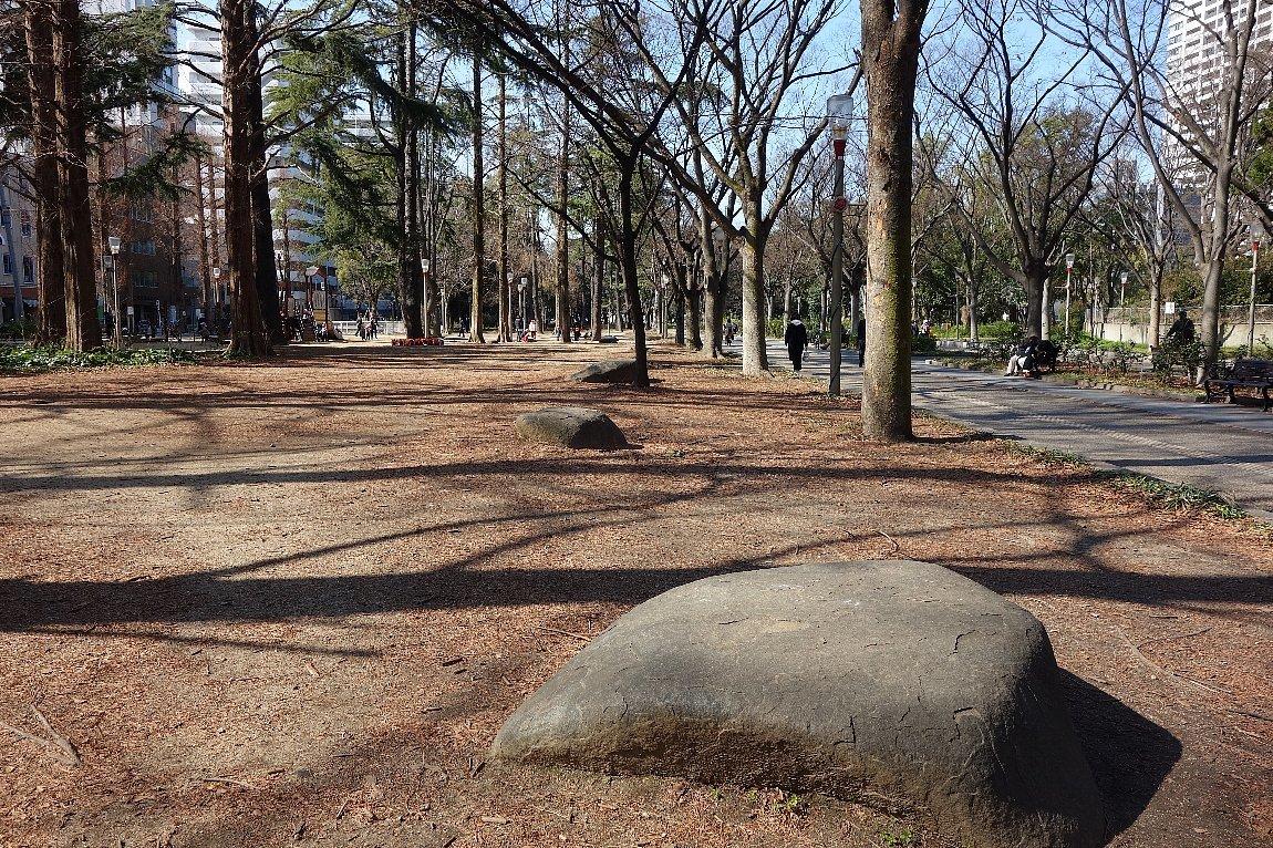 靭(うつぼ)公園 東園_c0112559_08144005.jpg