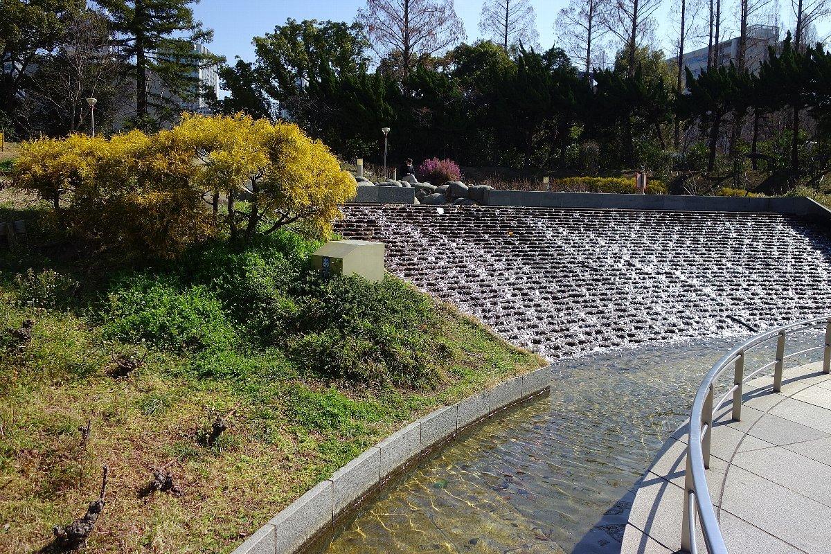靭(うつぼ)公園 東園_c0112559_08203162.jpg