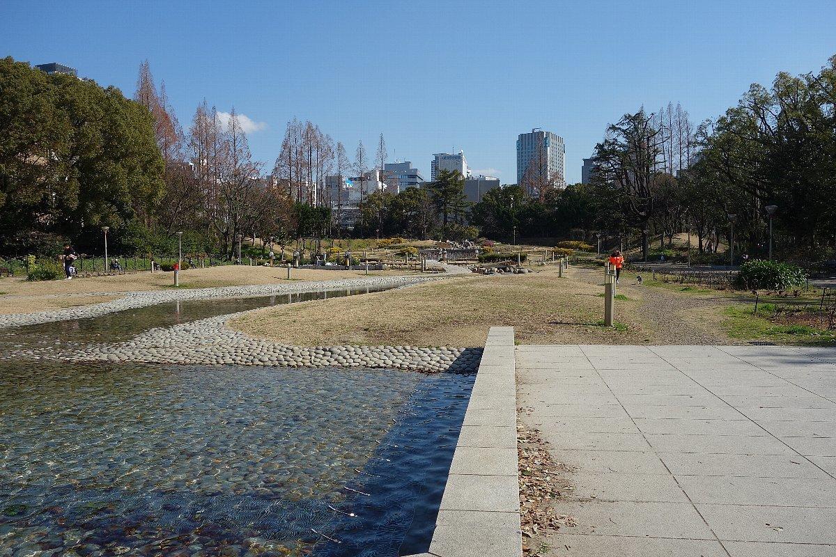 靭(うつぼ)公園 東園_c0112559_08240520.jpg