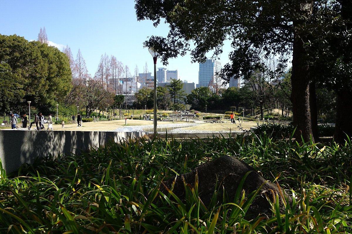靭(うつぼ)公園 東園_c0112559_08242396.jpg