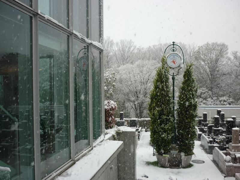 季節外れの大雪_b0268364_15084055.jpg