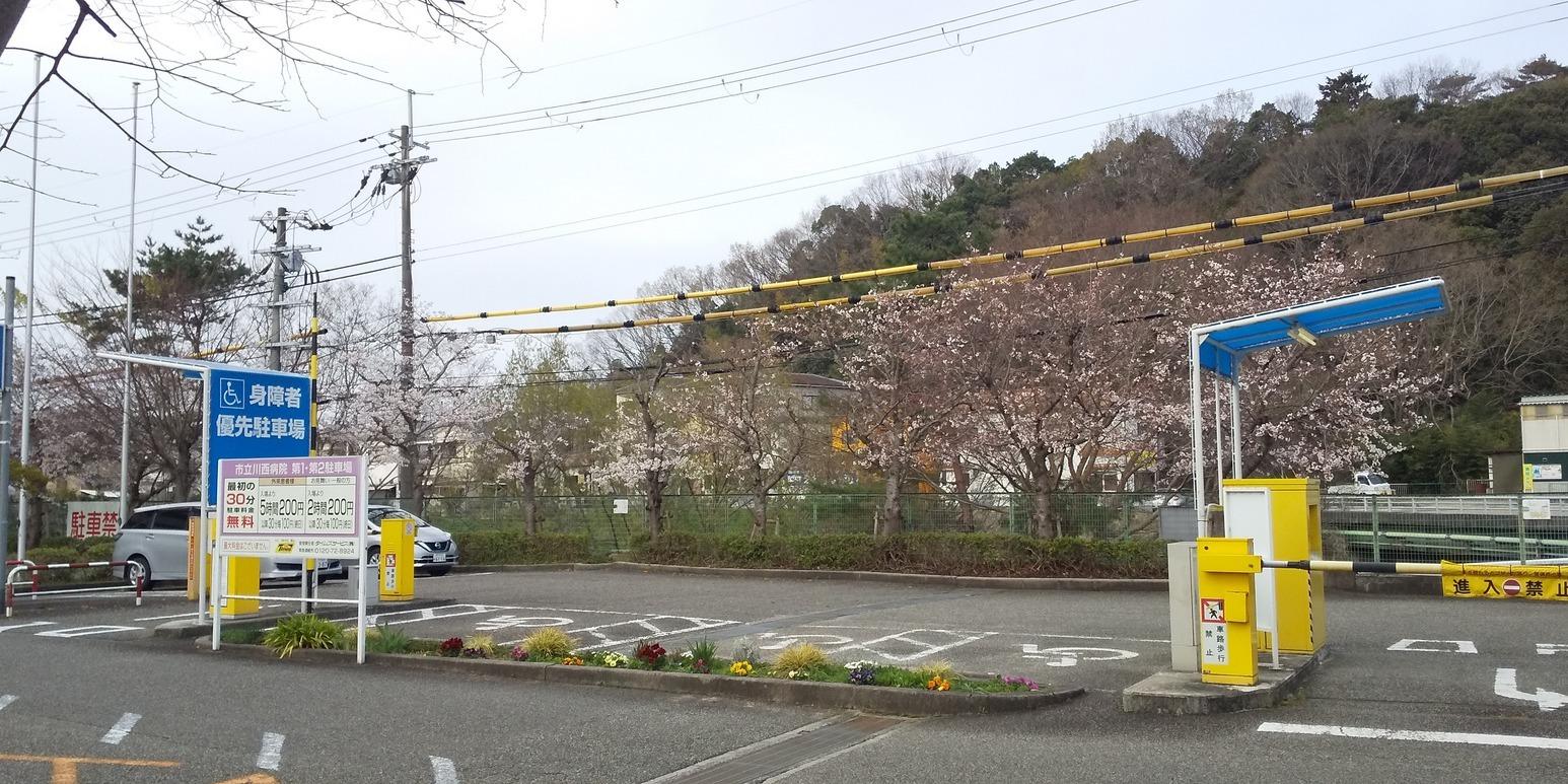 🌸桜咲く川西病院前😊指定管理者制度導入から1年、かわいい花も顔を見せています💠_f0061067_19514250.jpg