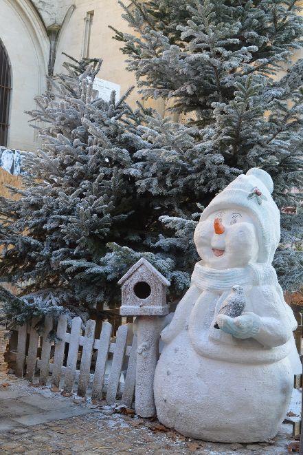 冬のしろしろから春のふわふわに_b0346275_06410237.jpg