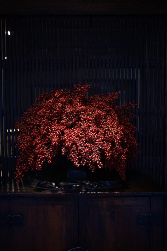 ソメイヨシノと牡丹桜_d0335577_17133239.jpeg
