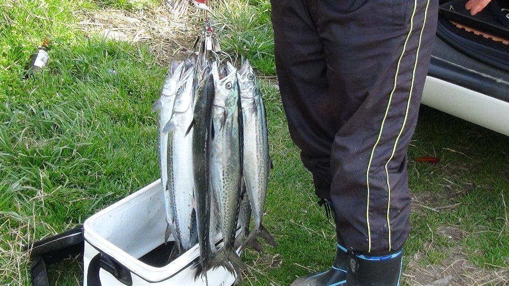 釣り場は賑やか!_e0065084_18521641.jpg