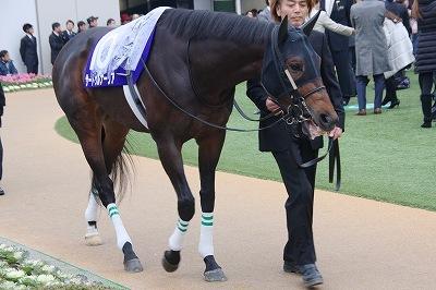 サートゥルナーリア(19'有馬記念2)_b0015386_21301901.jpg