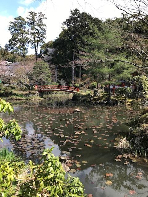 大原野神社_f0204295_13252746.jpg