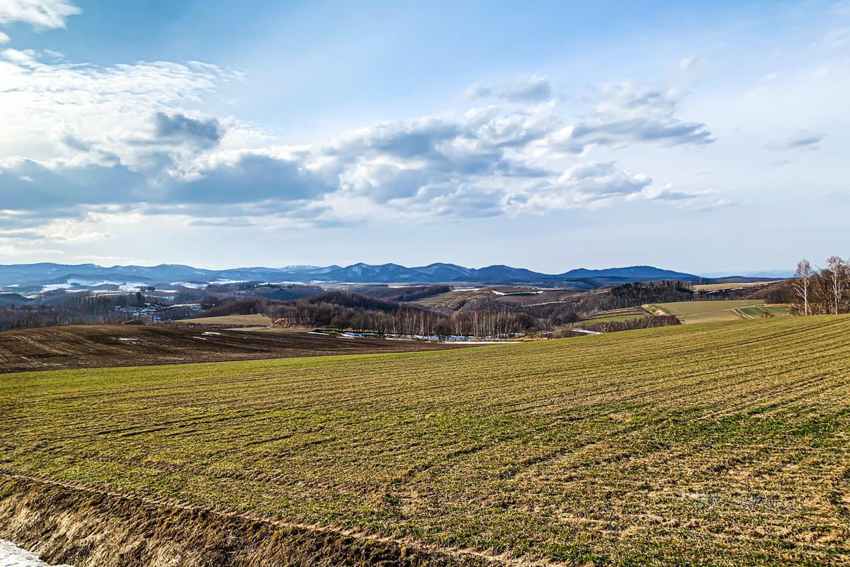 田舎の良いところ_c0033513_20354513.jpg