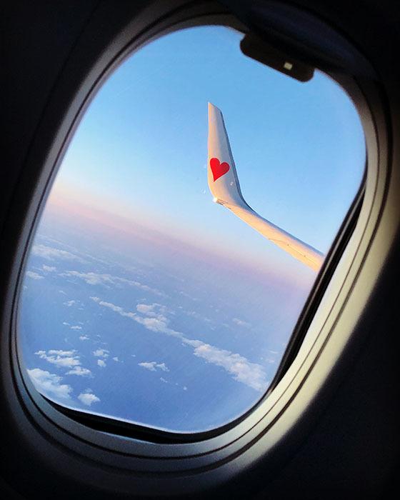 SKY308便(鹿児島→羽田) / iPhone 8_c0334533_22572381.jpg