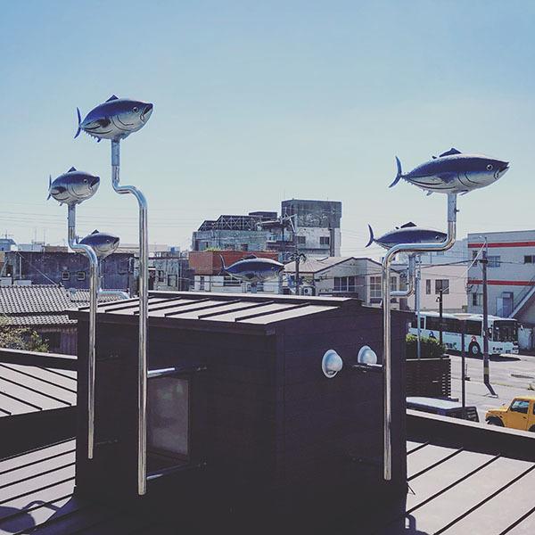 枕崎市東本町 / iPhone 8_c0334533_23113134.jpg
