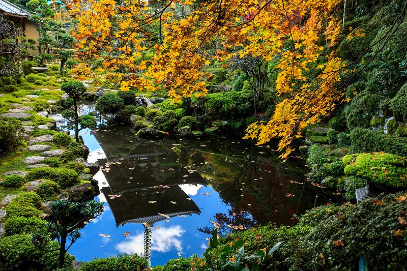 紅葉が彩る奈良2019 西南院の秋_f0155048_2303439.jpg
