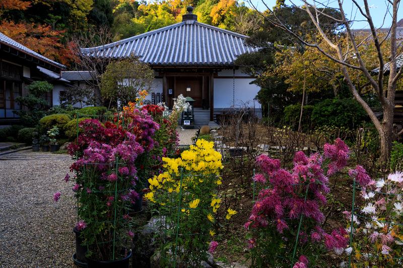 紅葉が彩る奈良2019 西南院の秋_f0155048_230667.jpg