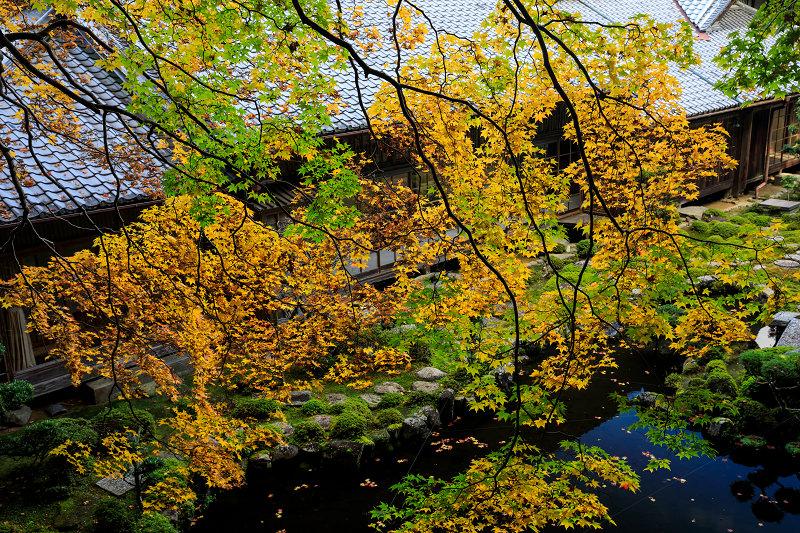 紅葉が彩る奈良2019 西南院の秋_f0155048_2312617.jpg
