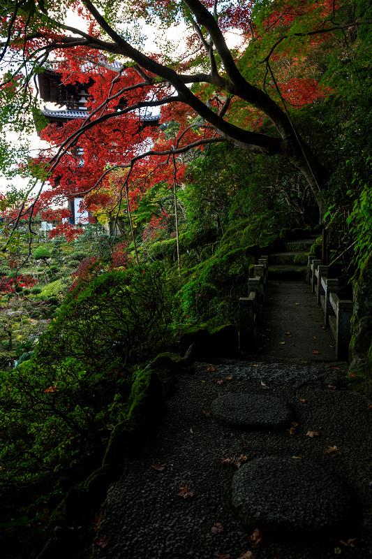 紅葉が彩る奈良2019 西南院の秋_f0155048_2314020.jpg
