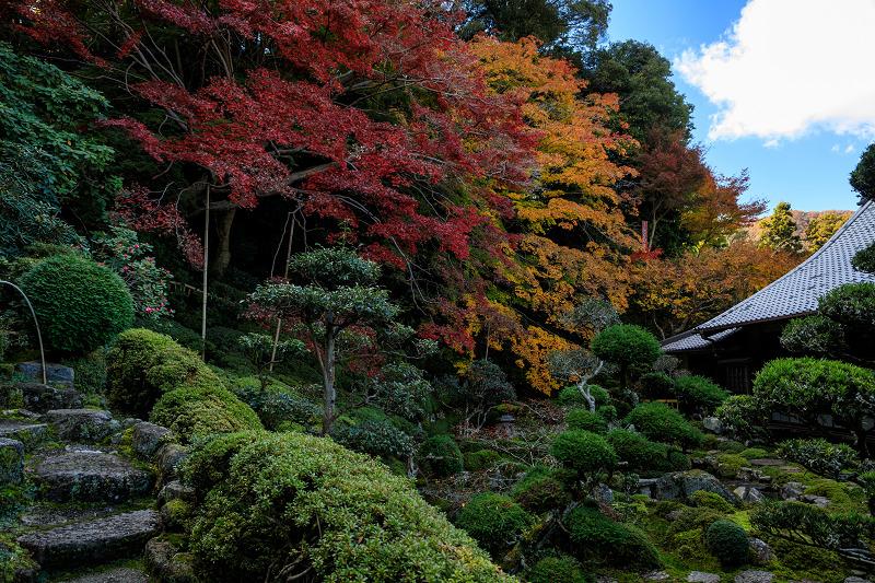 紅葉が彩る奈良2019 西南院の秋_f0155048_2322233.jpg