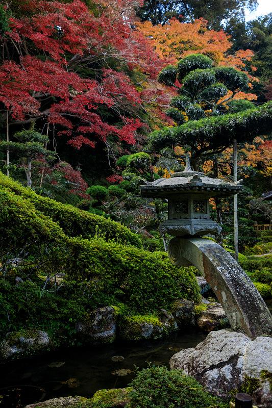 紅葉が彩る奈良2019 西南院の秋_f0155048_2323435.jpg