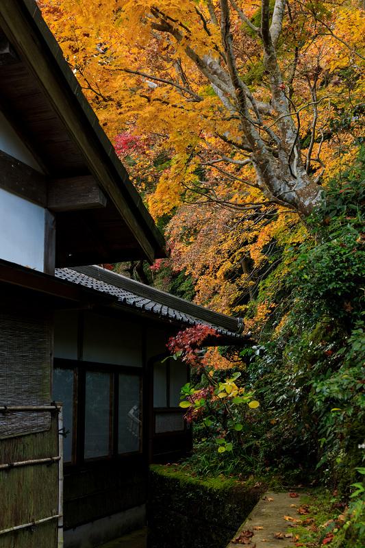 紅葉が彩る奈良2019 西南院の秋_f0155048_2333057.jpg
