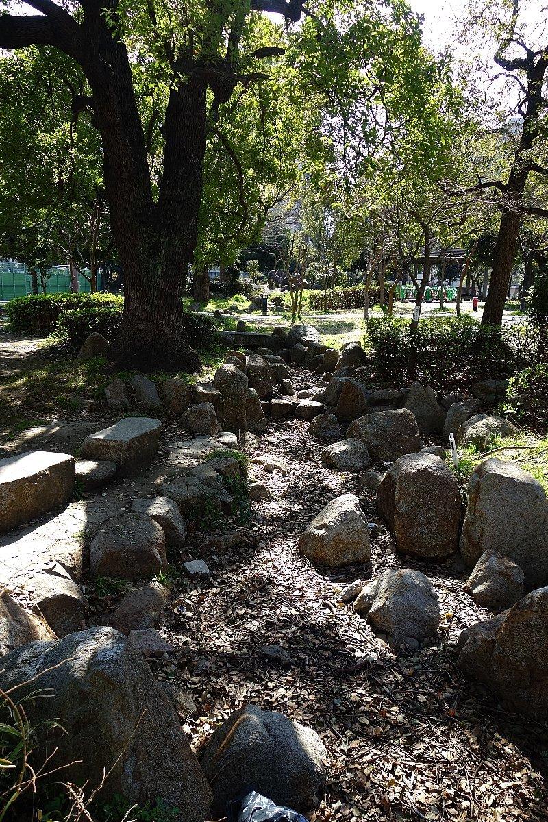 靭(うつぼ)公園 西園_c0112559_08101449.jpg