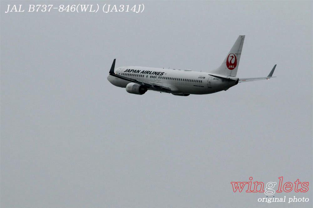 '20年 関西空港レポート ・・・ JAL/JA314J_f0352866_221228.jpg