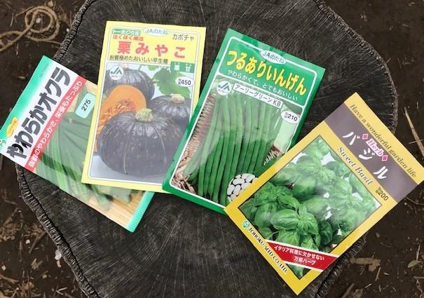 インゲン、オクラ、カボチャ、バジルの種蒔き3・31_c0014967_09171286.jpg