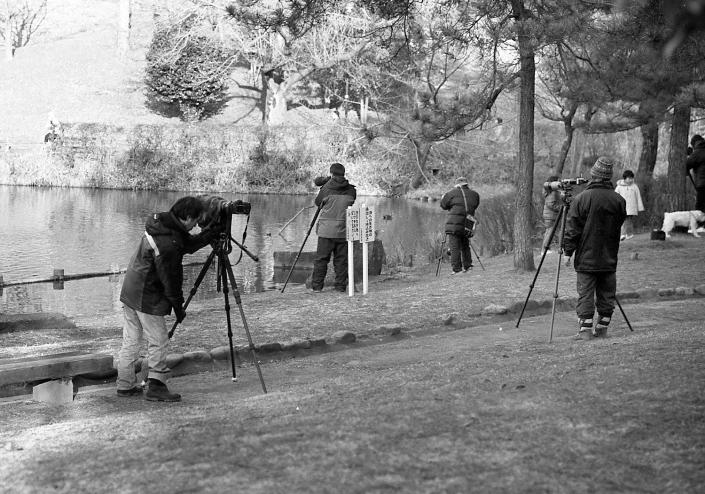 豊ヶ丘南公園で野鳥を撮る人々と恵庭の野鳥カメラマン_c0182775_1752449.jpg