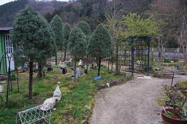 今日のお庭_e0365880_00075996.jpg