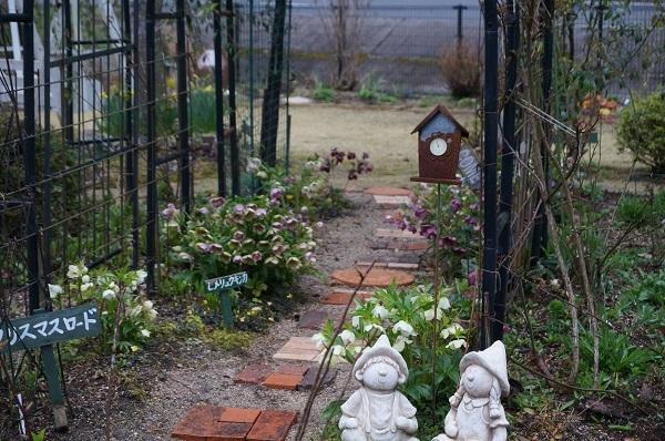 今日のお庭_e0365880_00081440.jpg