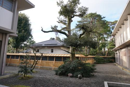 伝統産業工芸館塀改修工事_d0095305_17504373.jpg