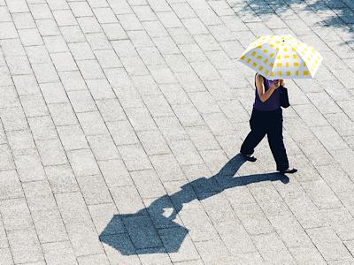 遮光率100%のすごい日傘!!のご紹介です。_f0249610_10274244.png