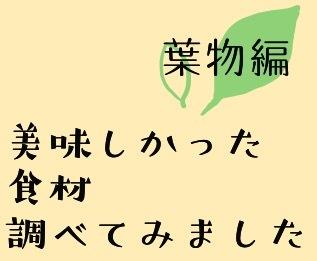 春キャベツを美味しく食べよう(北山)_f0354314_22180812.jpeg