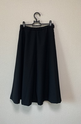 籠ってスカート縫ってるだね_f0251618_17554188.jpg