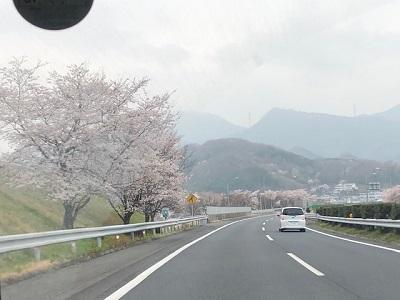 花曇り_f0019247_1623795.jpg